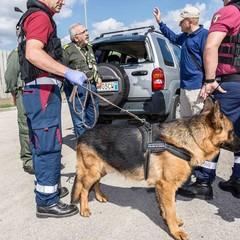 Unità cinofila Associazione Nazionale Polizia di Stato.Terlizzi