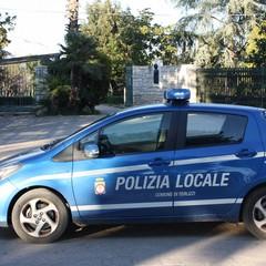 Controlli Polizia Locale JPG