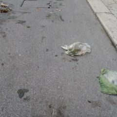 Gestione rifiuti, il passo indietro di Terlizzi