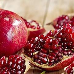 Alimenti d'autunno