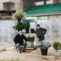 mercato fiori di