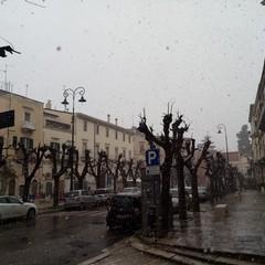 Nevica a Terlizzi