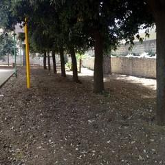 Parco Marinelli x