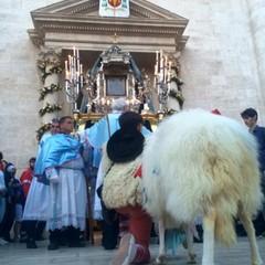PECORELLA ASSOCIAZIONE FESTA MAGGIORE