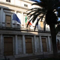 Piccioni in piazza Cavour JPG