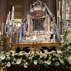 Supplica alla Madonna di Sovereto dalla Cattedrale Terlizzi aprile