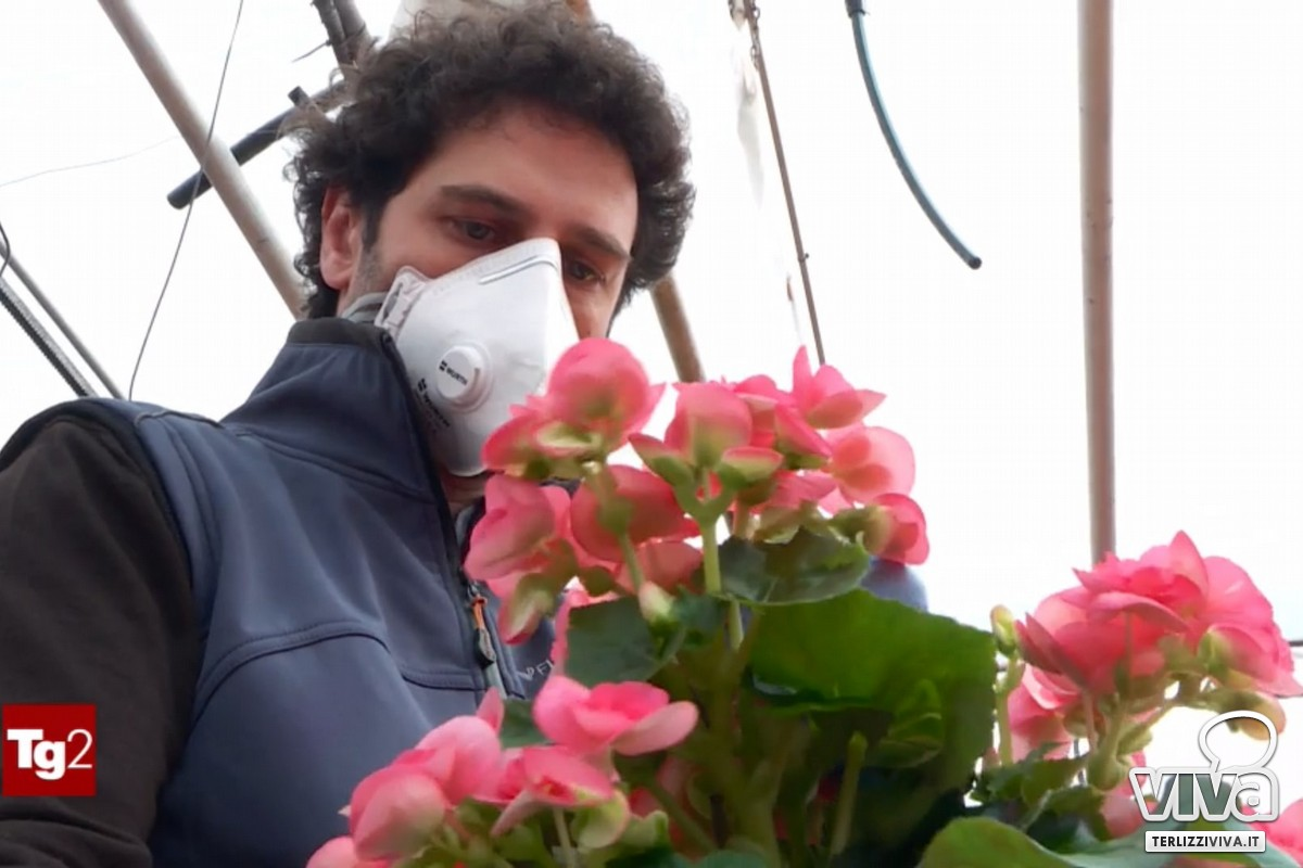 Florovivaisti in crisi