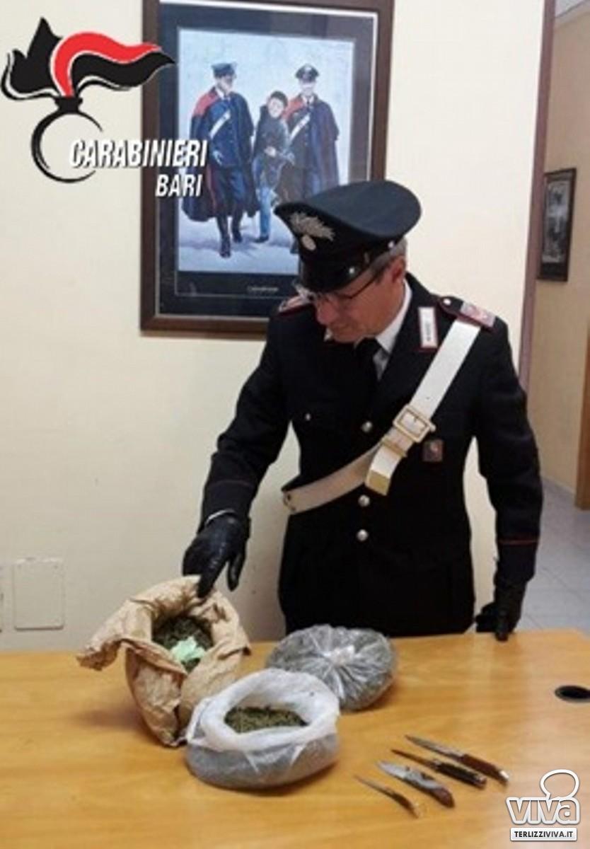 La droga e i coltelli sequestrati dai Carabinieri