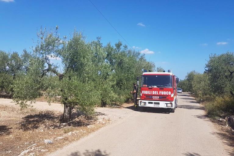 Terlizzi brucia: ancora incendi in contrada Pozzo Soldano