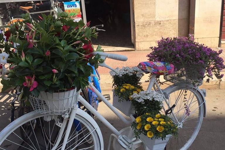 bici in fiore biciclettata vicoli in fiore