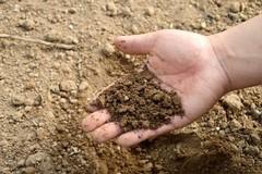 Crisi agricola: l'ANPA scrive ad Assessore e Prefetto