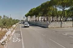 Gemmato: «Una nuova rotatoria sulla provinciale Terlizzi-Molfetta»