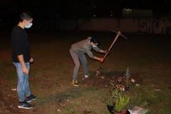 Giovanissimi in azione: così nasce un bosco urbano