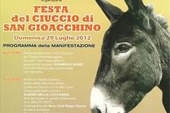 V edizione della Festa del Ciuccio di S. Gioacchino, il programma
