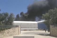 Incendio in una serra