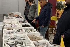 Coldiretti -Impresapesca Puglia: Capodanno a base di pesce, ma 8 su 10 sono stranieri