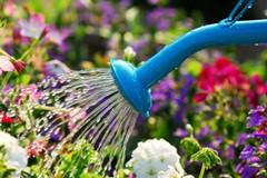 Florovivaismo, ARIF risponde a Volpe: via libera alla rateizzazione del pagamento acqua