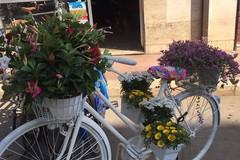 Vicoli in Fiore... anche in bicicletta