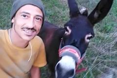Bruno Dias, il pellegrino e la mula Salam fanno tappa a Terlizzi