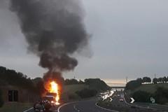Bus in fiamme sulla strada verso Roma, illesi i terlizzesi a bordo