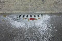 Stop agli scarafaggi, è in corso la pulizia delle caditoie in tutta la città