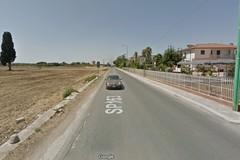 Un nuovo quartiere tra via Ruvo e viale dei Lilium