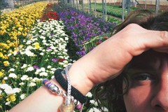 """Florovivaismo: """"riapre"""" la vendita di fiori e piante. Ma i problemi restano"""