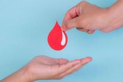Domani Giornata della donazione del sangue Avis