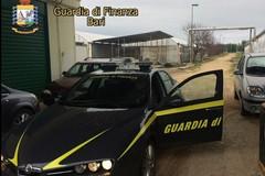 """Operazione """"Sunflower"""": ai fratelli Ciccolella l'accusa di presunta truffa sul fotovoltaico"""