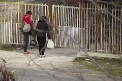 Accompagnava in auto quattro prostitute, ancora un arresto per favoreggiamento