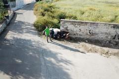 Giuseppe, 15 anni: tre interventi di pulizia del territorio questa settimana