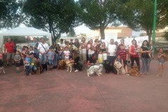 Una festa per cani e bambini, le immagini della manifestazione dedicata a Lilly
