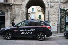 Operazione di Carabinieri e Polizia Locale contro lo spaccio di droga