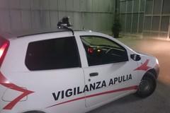 Un'auto, attrezzi da scasso e il cassetto di un registratore di cassa ritrovati a Sovereto