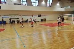 Futsal Terlizzi oggi l'esordio sul campo del Poggiorsini