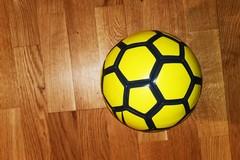 Futsal Terlizzi al lavoro per un 2020 sprint
