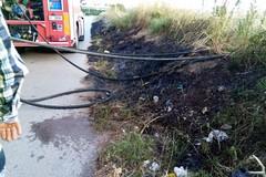 Ancora fiamme alle sterpaglie: Vigili del Fuoco in via San Francesco