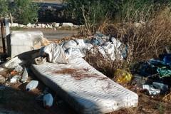 Ritiro rifiuti ingombranti: tutte le info utili da Legambiente Terlizzi