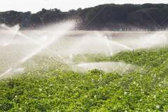 I tecnici dell'ARIF rispristinano gli allacci vandalizzati nell'agro di Terlizzi