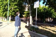 Margherite bianche in onore dei magistrati Falcone e Borsellino e delle vittime della strage di Capaci