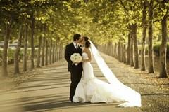 Laricchia: «Il settore wedding ha bisogno di interventi strutturali seri, non degli spot di Emiliano»