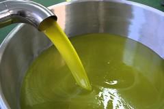 Coldiretti Puglia, scivolano le vendite di olio d'oliva per chiusura ristoranti