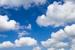Candelora, nubi sparse e massime sopra la media stagionale a Terlizzi