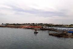 Ordigno bellico in mare, balneazione vietata alla Trincea sul litorale giovinazzese