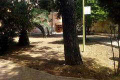 Legambiente Terlizzi: «Si piantino nuovi alberi nel Parco Marinelli»