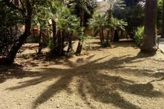 """Sistemato il Parco Marinelli"""" dopo l'appello di alcune mamme al sindaco Gemmato"""