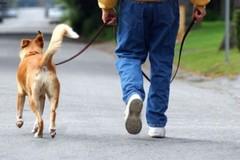 Sospesa ordinanza su bisogni fisiologici degli animali domestici