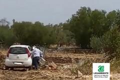 Colto in flagranza mentre abbandona rifiuti nell'agro: la denuncia di Legambiente Terlizzi