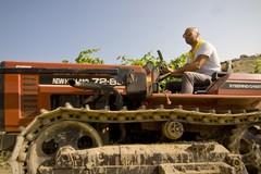 Coldiretti: «Agricoltura diventi priorità nell'azione di governo»
