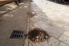 Iniziata a Terlizzi pulizia caditoie e griglie stradali da parte della SANB